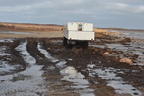 crawler_mud