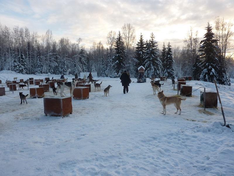 2015 Alaska Aurora Expedition